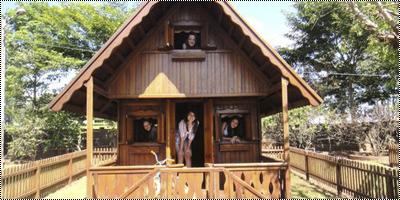 Henry and Eleanor's Shelter 13723492_5ZRLK