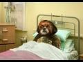 "Aleixo no Hospital – ""Outra Visita"""