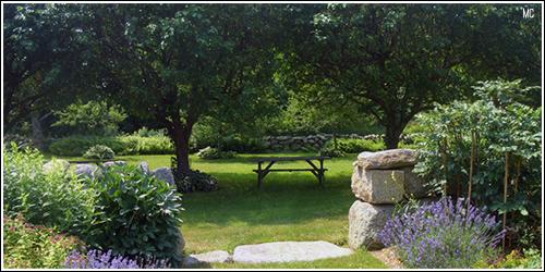 Jardins      - Página 3 14993839_GUonQ